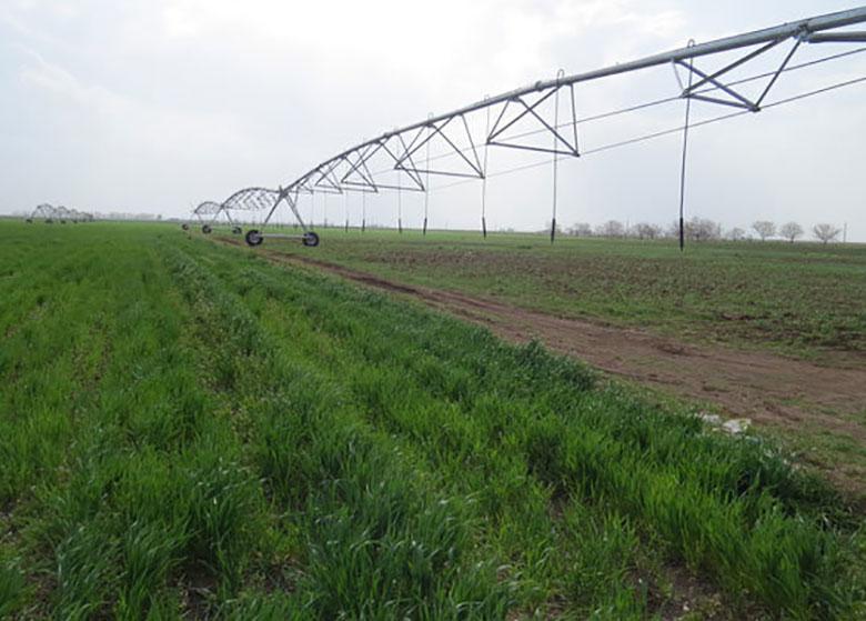 توصیههای ۳ روزه هواشناسی کشاورزی