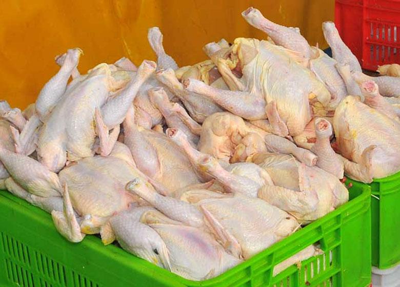 عرضه مرغ یارانهای درآستانه ماه رمضان