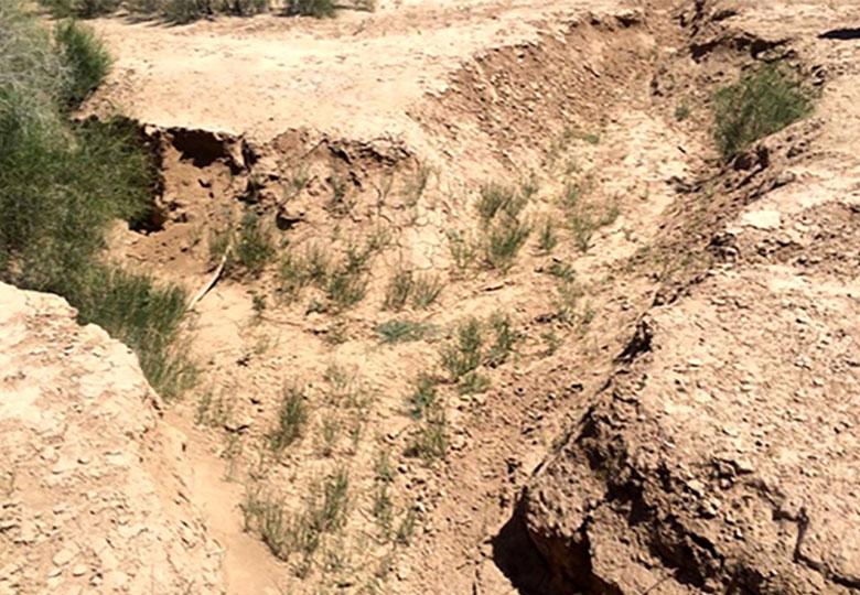 فرونشست سالانه ۱۶ سانتی متر از اراضی دشت ورامین