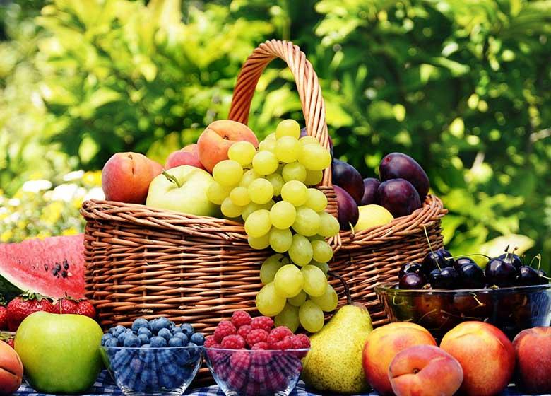 پاسخ وزارت کشاورزی به اظهارات یکی از کاندیداها در خصوص واردات میوه