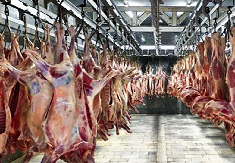 گوشتگوسفند استرالیایی با نرخ ۳۳۰ هزار ریال به تهران رسید