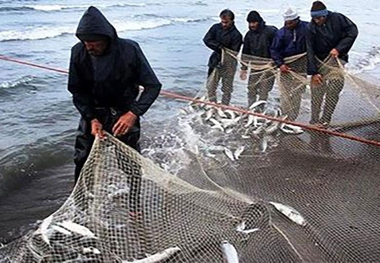 توسعه صنعت پرورش ماهی در سیستان