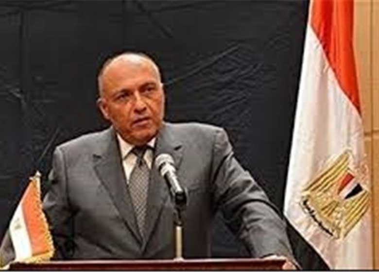 مصر شورای امنیت را در جریان حمله به لیبی قرار داد