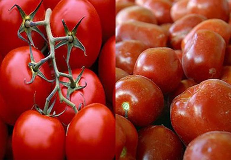 کاهش قیمت سیبزمینی و گوجهفرنگی