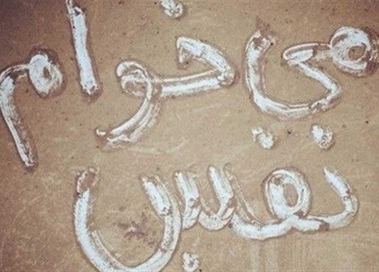خوزستان؛ آینه تمام قد عملکرد ۴ ساله دولت در حوزه محیط زیست/اظهارات غیرواقعی درباره تالاب هورالعظیم