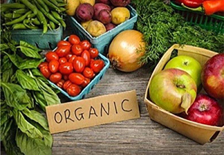 سهم محصولات ارگانیک در بازار ایران چقدر است؟