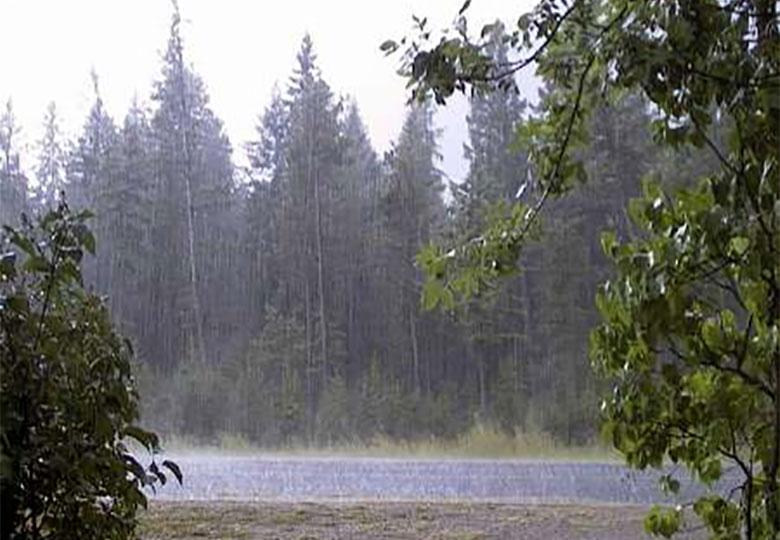 بارش پراکنده در برخی مناطق شمالی، شرقی و مرکزی تا سه روز آتی