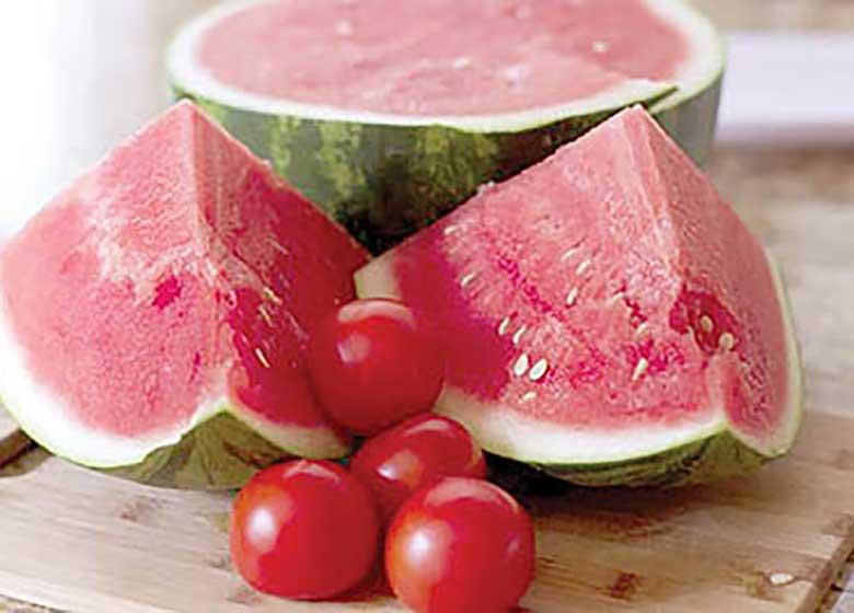 علت برگشت خوردن هندوانه و گوجه فرنگی ایرانی از عمان چیست؟