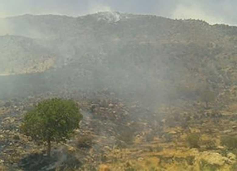 """آتش سوزی در جنگلهای """"تنگ کناره"""" بویراحمد"""