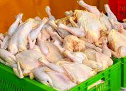 پیشبینی کاهش نرخ مرغ در اواخر هفته