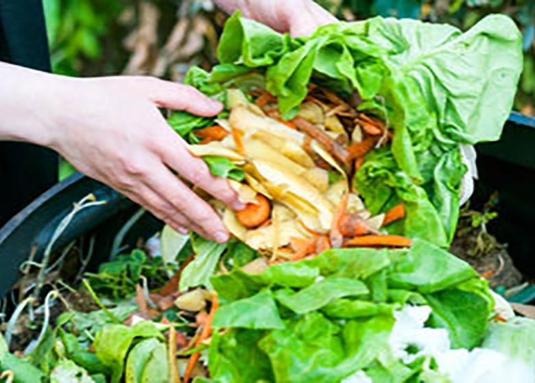٢٥درصد میوه و سبزی کشور تلف میشود