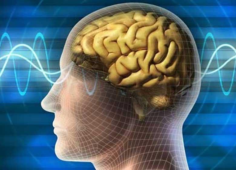 مغز انسان ساختار ۱۱ بعدی دارد!
