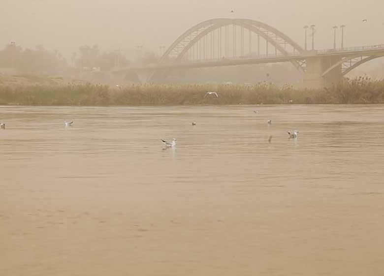 بازدید متخصصان بینالمللی از چهار سایت مقابله با گرد و غبار ایران