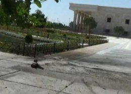 تصاویر جدید از انفجار انتحاری در حرم امامخمینی(ره)