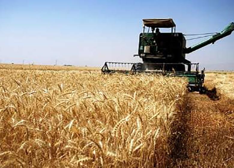 اختصاص 9 هزار میلیارد ریال تسهیلات به خرید تضمینی محصولات کشاورزی
