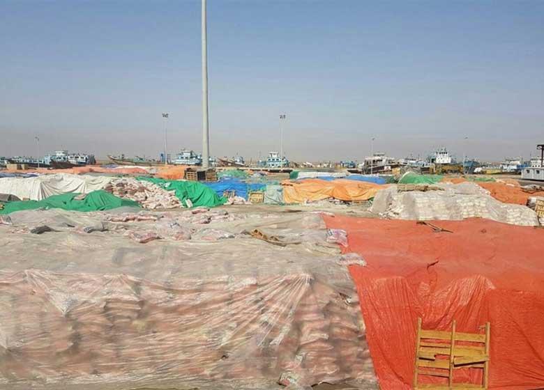 جزئیات ورود ۱۰۰ هزار تن برنج آلوده وارداتی به کشور