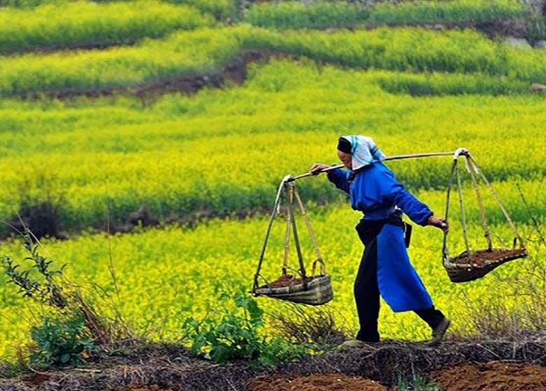 لغو قانون تمرکز وظایف کشاورزی عقبگرد به گذشته است