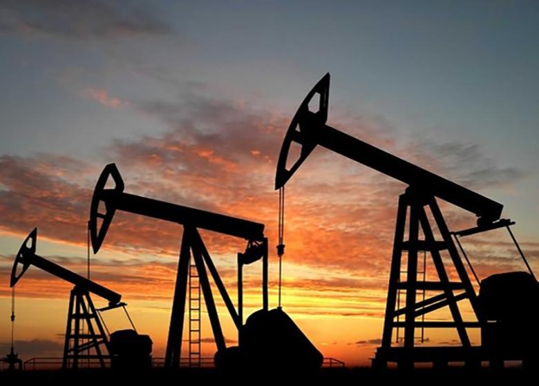 تقاضای جهانی نفت کاهش پیدا می کند