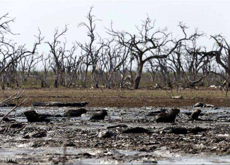 آب، مشکل تاریخی، بحران رو به رشد