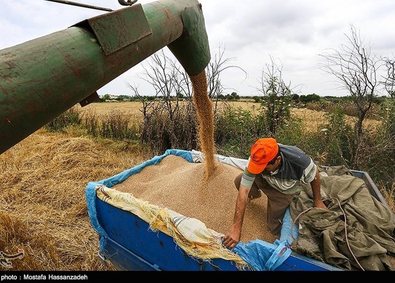 خرید تضمینی محصولات کشاورزی اقدامی راهبردی است