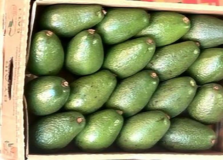 کاهش چشمگیر عرضه میوههای خارجی