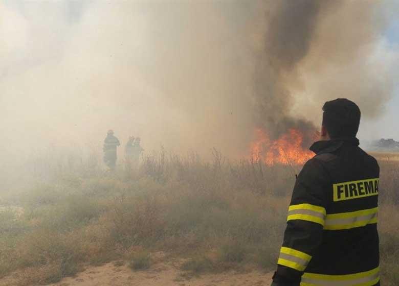 آتش ۳ هکتار از مزارع گندم ورامین را سوزاند