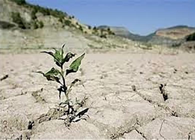 هزینه تامین آب ۱۰۰ برابر شده است