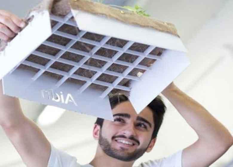 ساخت باغچه معلق بدون خاک در ایران!