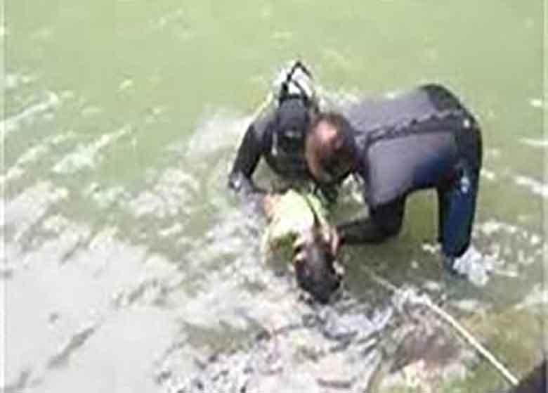 غرق شدن مرد ۴۰ ساله در سد طالقان