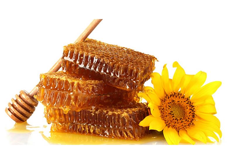 پیش بینی تولید ۸۶ هزار تن عسل در سال جاری