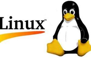 زخمی دو ساله بر پیکر هسته لینوکس
