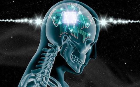 فرصت های پژوهشی در قلمرو مطالعات علوم شناختی بررسی می شود