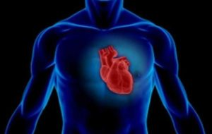 نقش استرس در بروز دردهای قلبی/درد قفسه سینه را جدی بگیرید