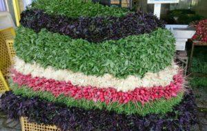مصرف سبزی در پیشگیری از چاقی و دیابت موثر است