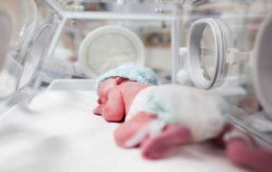 وضعیت قراردادهای رحم جایگزین/ ردپای دلالان در فروش تخمک