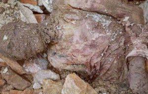 جسد مومیایی کشف شده دفن شد
