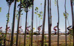 سرمربی تیم ملی دوچرخه سواری: با تیر و کمان به جنگ مسلسل آمدهایم