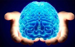 روش ابداعی محققان کشور برای درمان تومورهای لاعلاج مغزی