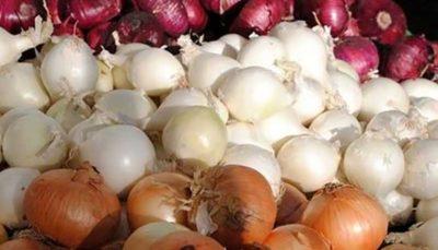 صادرات سیبزمینی و پیاز