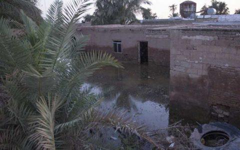 بروز بیماریهای عفونی تا چند ماه آینده در مناطق سیل زده