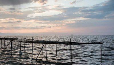 28 48 دریاچه ارومیه, فصل گرما
