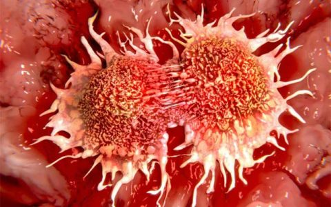 رشد سلول های سرطانی را با این ویتامین متوقف کنید