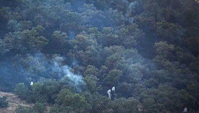 37 11 سازمان جنگلها قصد پروندهسازی برای مردم را ندارد