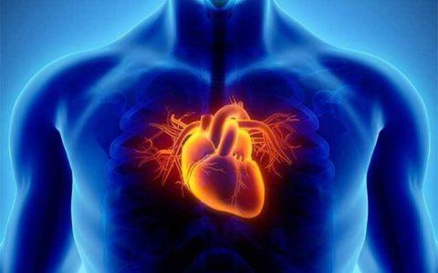 برای سلامت قلبمان چه کنیم؟