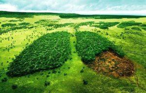 هشدار سازمان محیط زیست نسبت به بزرگترین خطر قرن بیست و یکم