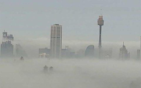 مه غلیظ در سیدنی دردسرساز شد
