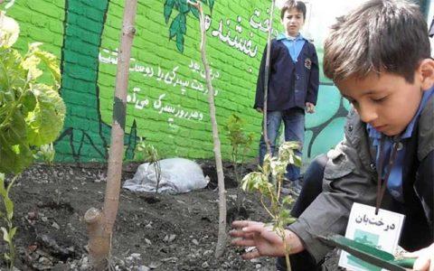 آغاز احداث «مدارس سبز» در ۳ استان