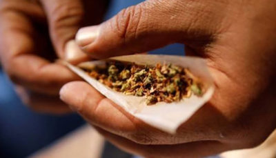 سخنگوی ستاد مبارزه با موادمخدر: به جای حشیش کاکائو مصرف کنید!