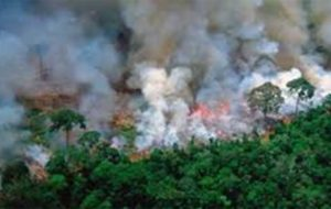 احتمال تغییرات آبوهوایی جهان در اثر آتشسوزی جنگلهای آمازون