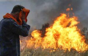 اعلام ممنوعیت ۶۰ روزه سوزاندن در جنگلهای آمازون
